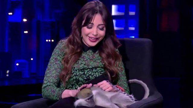 Mısırlı sunucu Lobna Asal, canlı yayında dakikalarca sevdiği maymunun saldırısına uğradı
