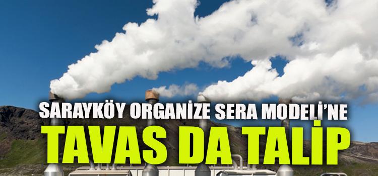 Sarayköy'deki organize sera bölgesi yatırımına Tavas da talip