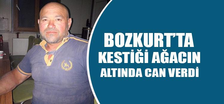 BOZKURT'TA ACI ÖLÜM