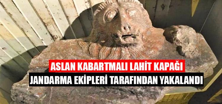 ASLAN KABARTMALI LAHİT KAPAĞI JANDARMA TARAFINDAN YAKALANDI
