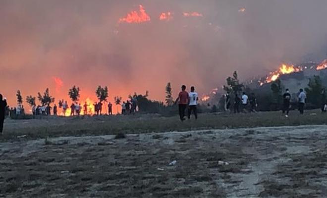 Buldan'da bir orman yangını daha başladı!